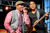 'Living Color' at ROTR 2014 in Columbus